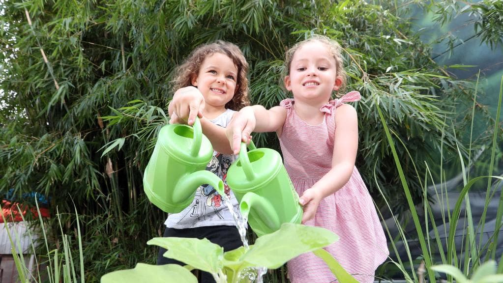 Who needs finger painting? Gold Coast toddlers use green thumbs to battle blues and grow lunch